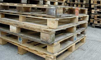 Frequently Ask Questions - Pallet Questions and Answers